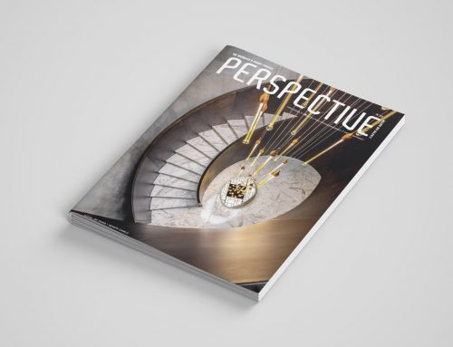 Article Perspective Architecture n°33